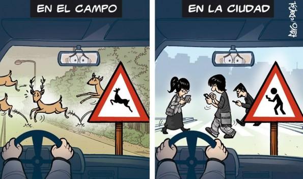 whatsapp peligro para conductores