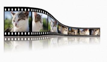 opciones para compartir videos en la red sin YouTube