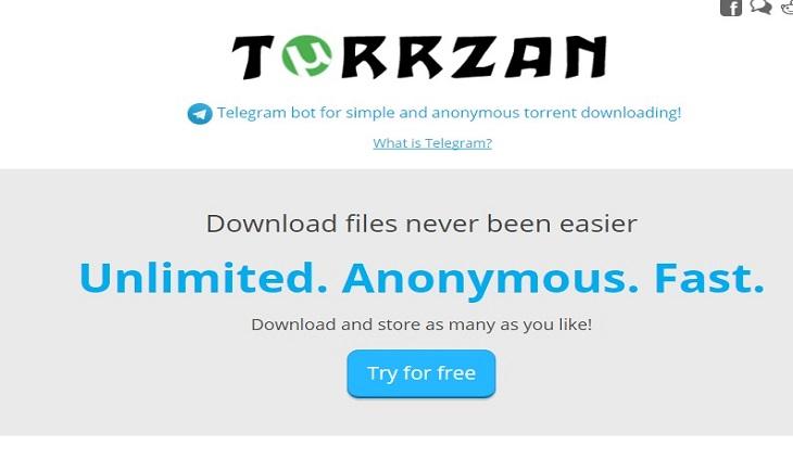 TorrZan